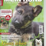 Mein-Hund-Sehsinn-Beyer-kl