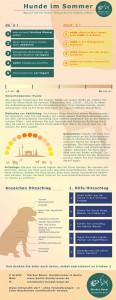 Hunde im Sommer - Infografik Gefahren für Hunde im Sommer